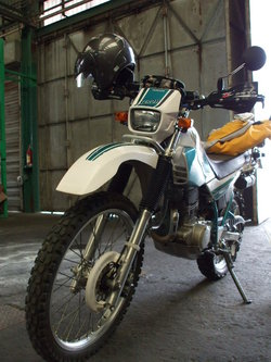 Dscf1466